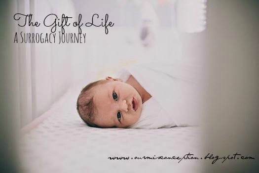 The Gift of Life - Our Misconception- A blog on Infertility ...
