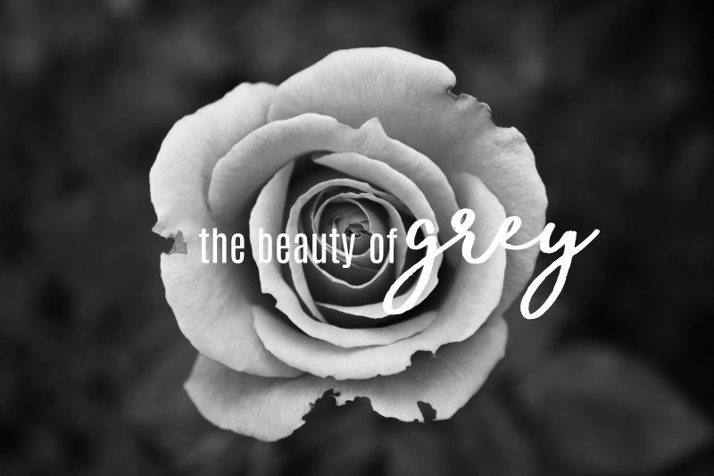 The beauty of grey